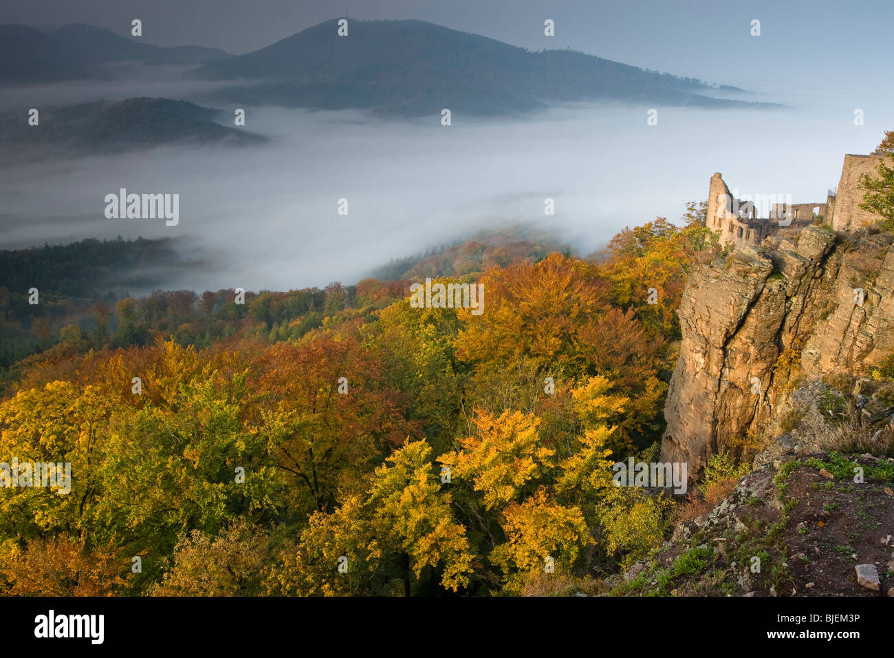 View over the Rhine Valley with Hohenbaden Castle, Baden-Baden, Germany Stock Photo