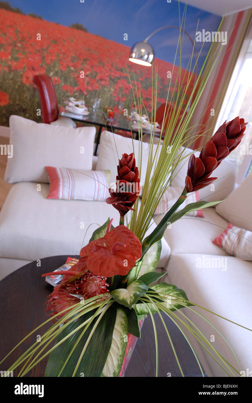Dried flower decor in a modern living room with poppy wall mural - Stock Image