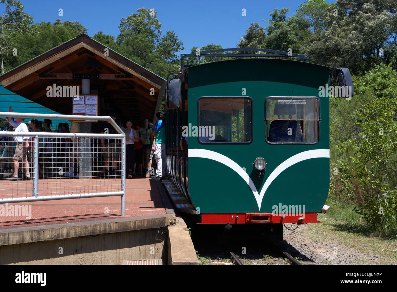 the ecological jungle tour train at iguazu national park, republic of argentina, south america - Stock Image