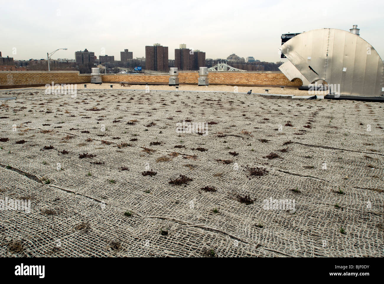 The newly installed green roof of the Power House building in Mill Pond Park in the New York borough of the Bronx Stock Photo