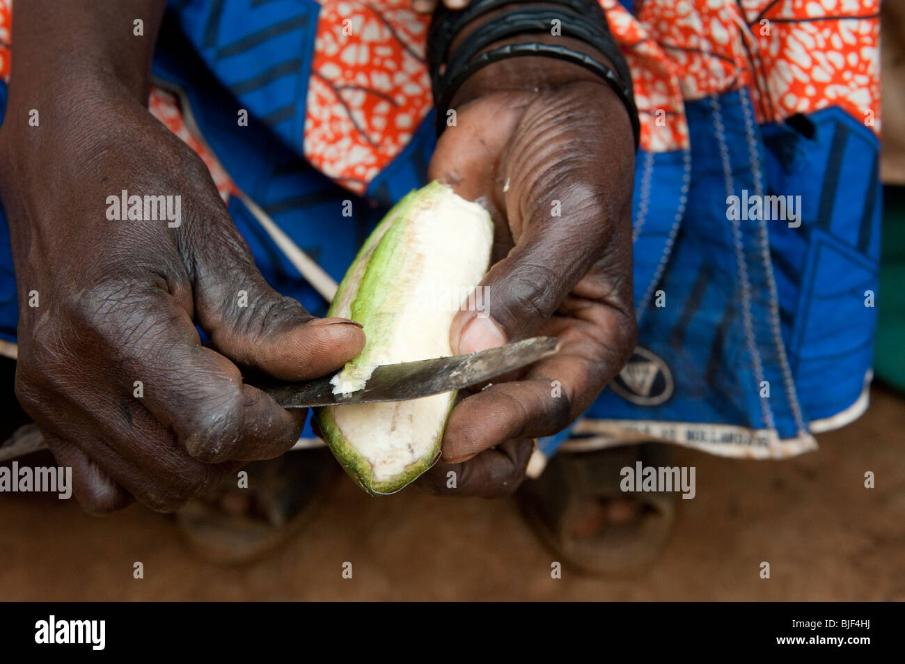 Lady peeling a green banana for food. They are the staple food for many familes in Rwanda. - Stock Image
