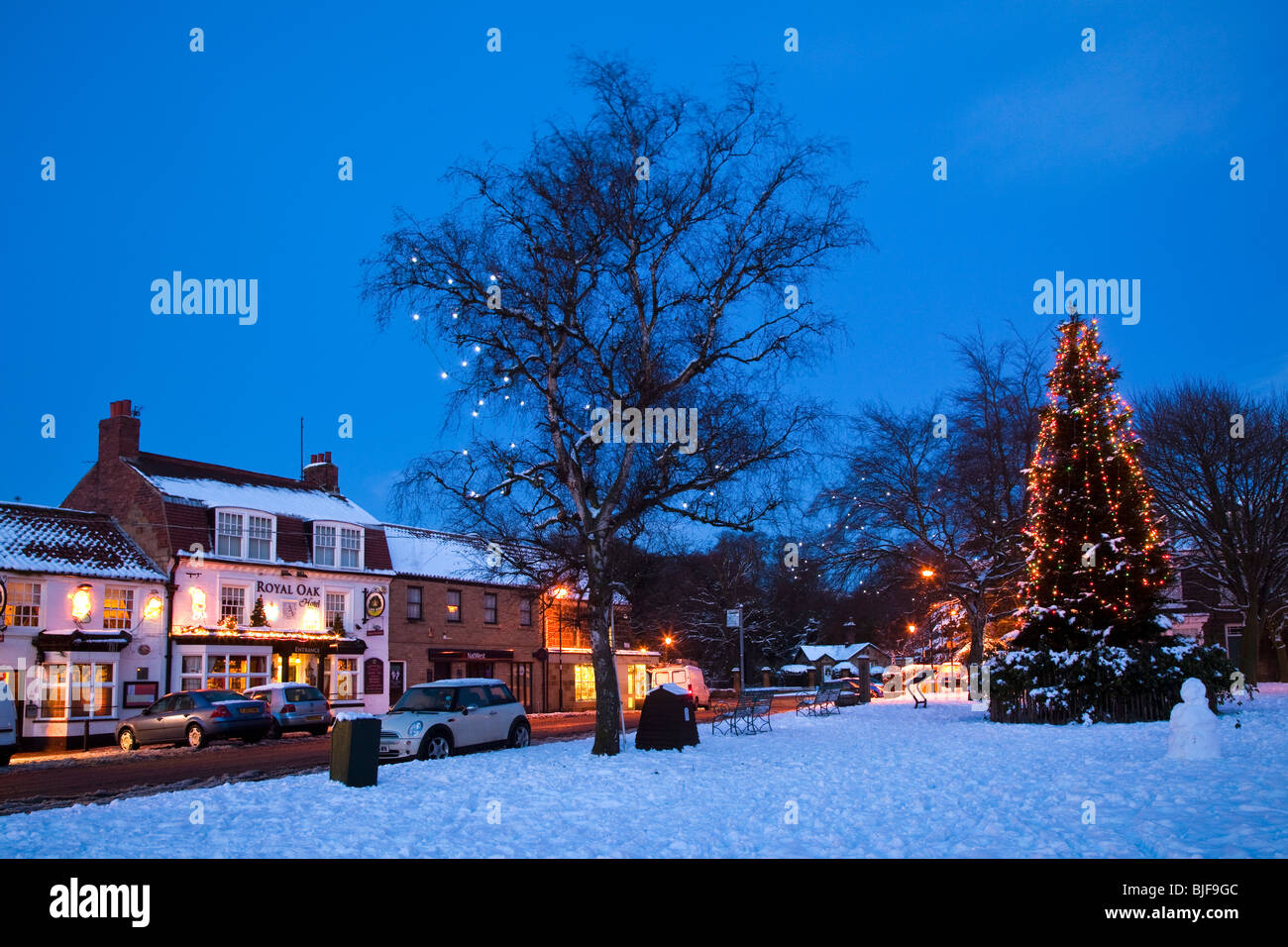 The Christmas Tree on the Green at Great Ayton North Yorkshire - Stock Image