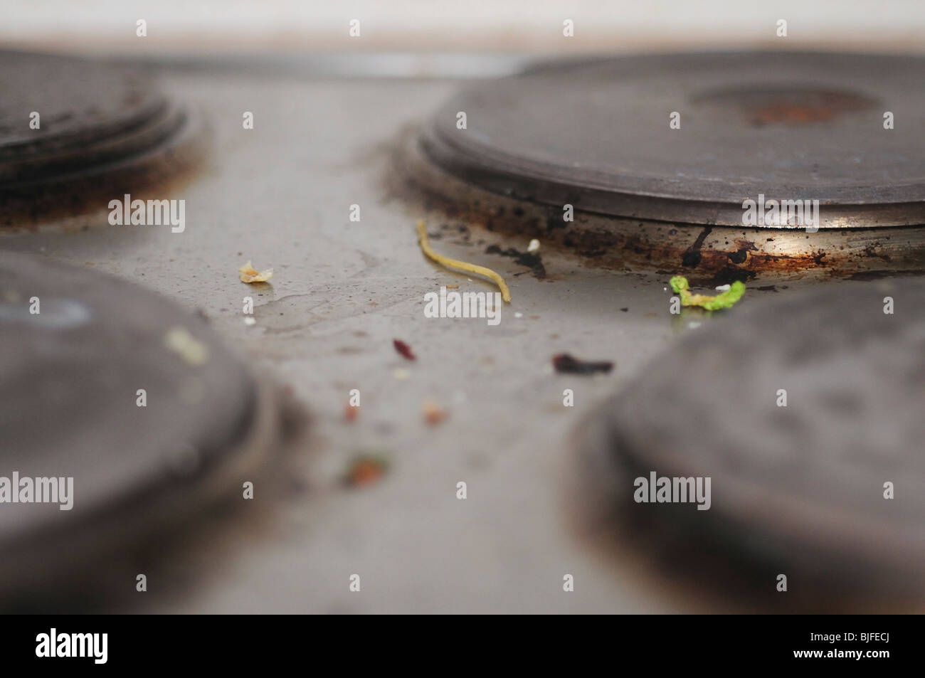 Close up of dirty electric Ceramic cooker hob - Stock Image