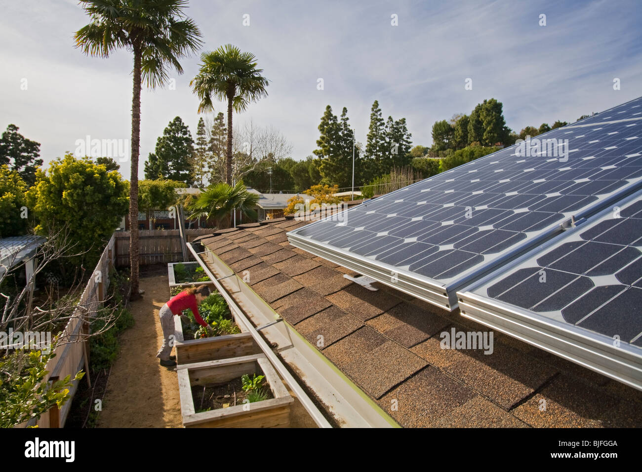 Solar Array on roof of house. Urban garden encircles house in Rancho Palos Verdes. Los Angeles County - Stock Image