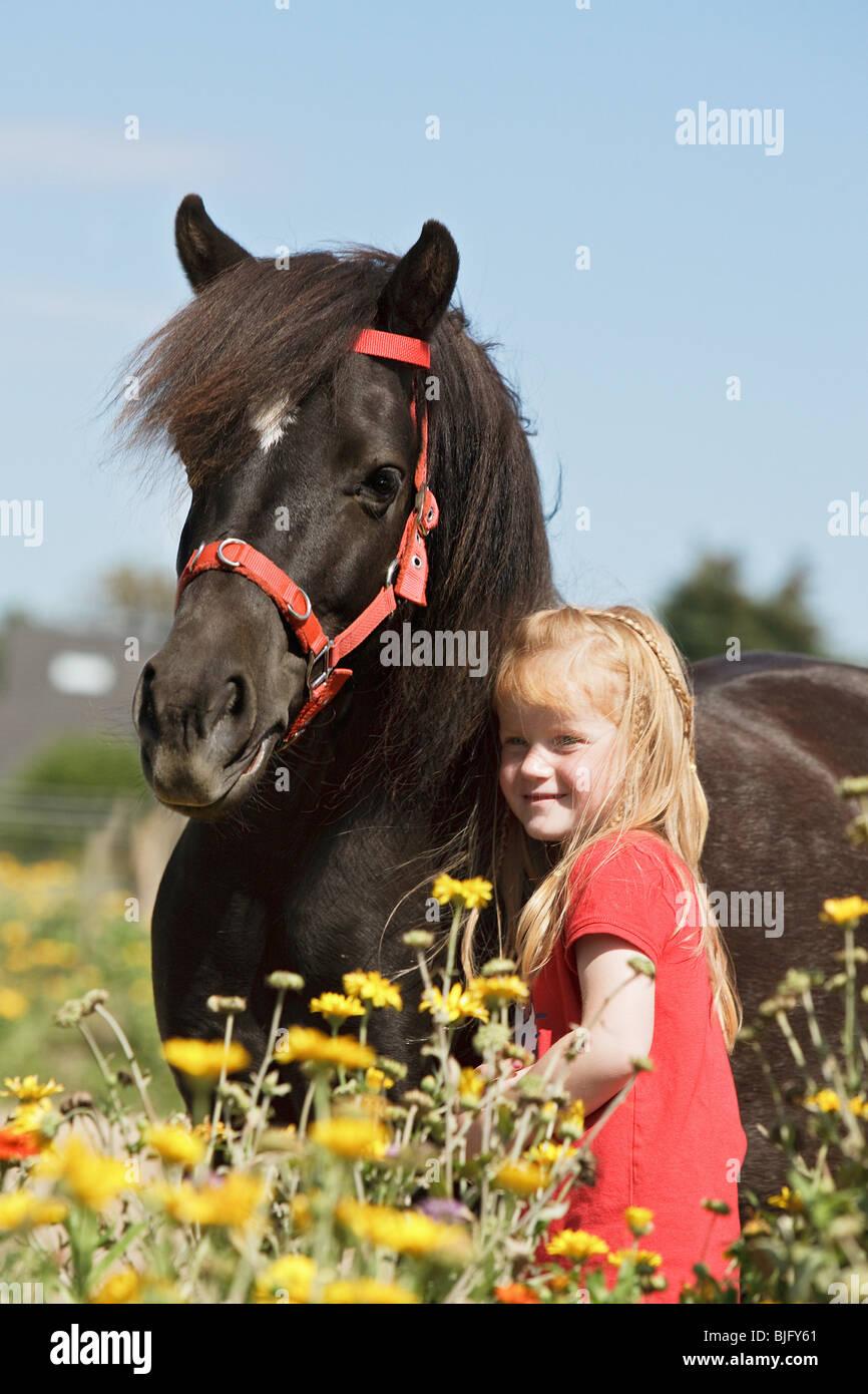 small girl besides Shetlandpoy - Stock Image