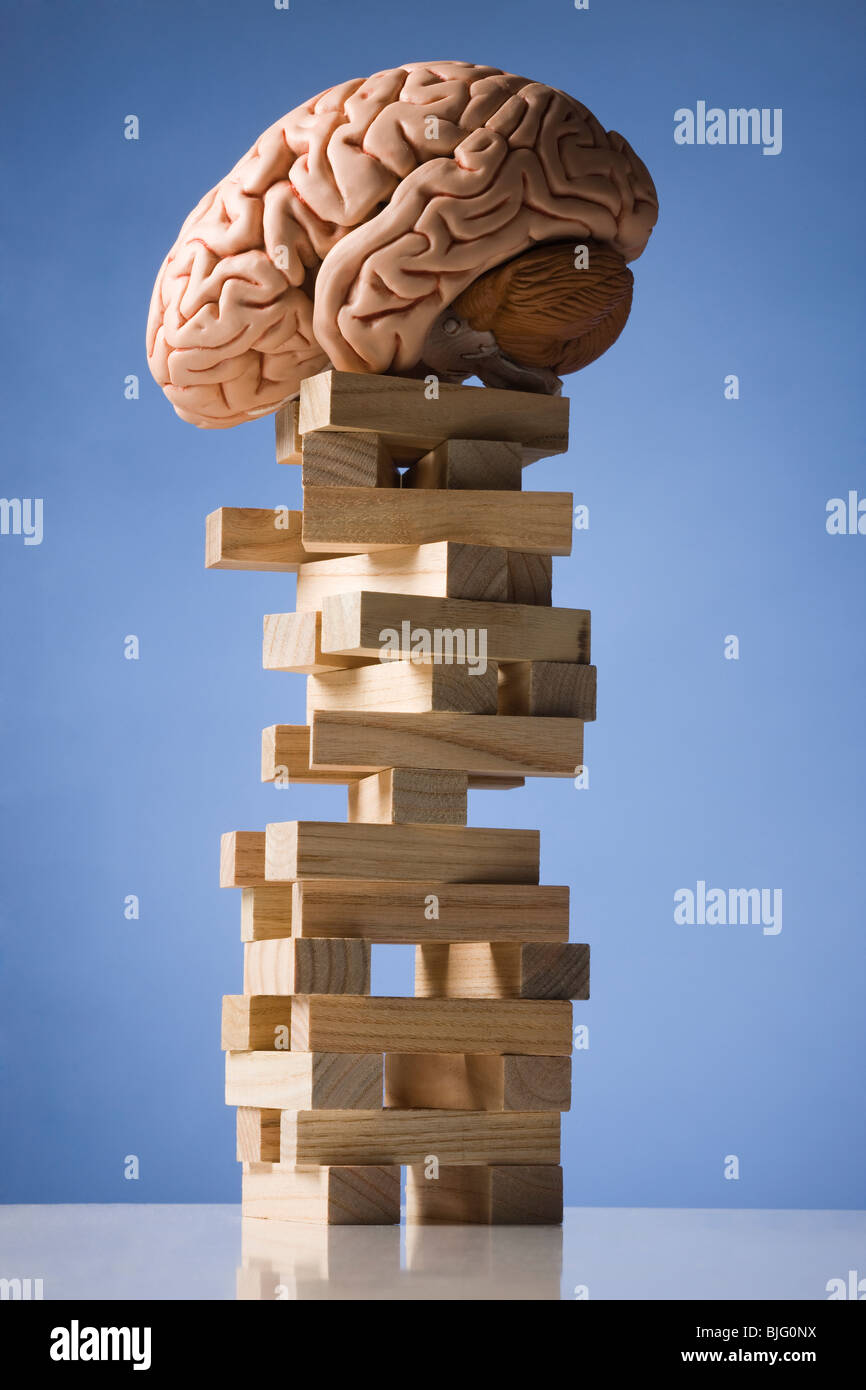 brain perched on a tower of blocks - Stock Image