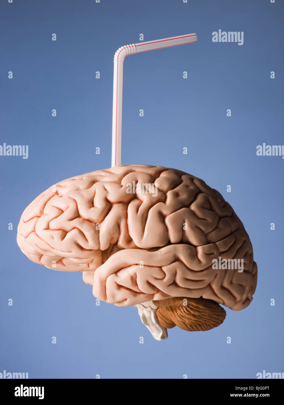 brain with a straw in it - Stock Image