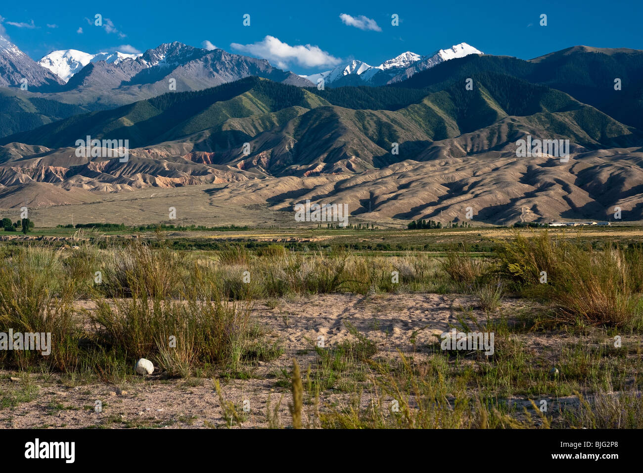 Landscape with dry plain in front and snow capped mountains in the back, Kazakhstan - Stock Image