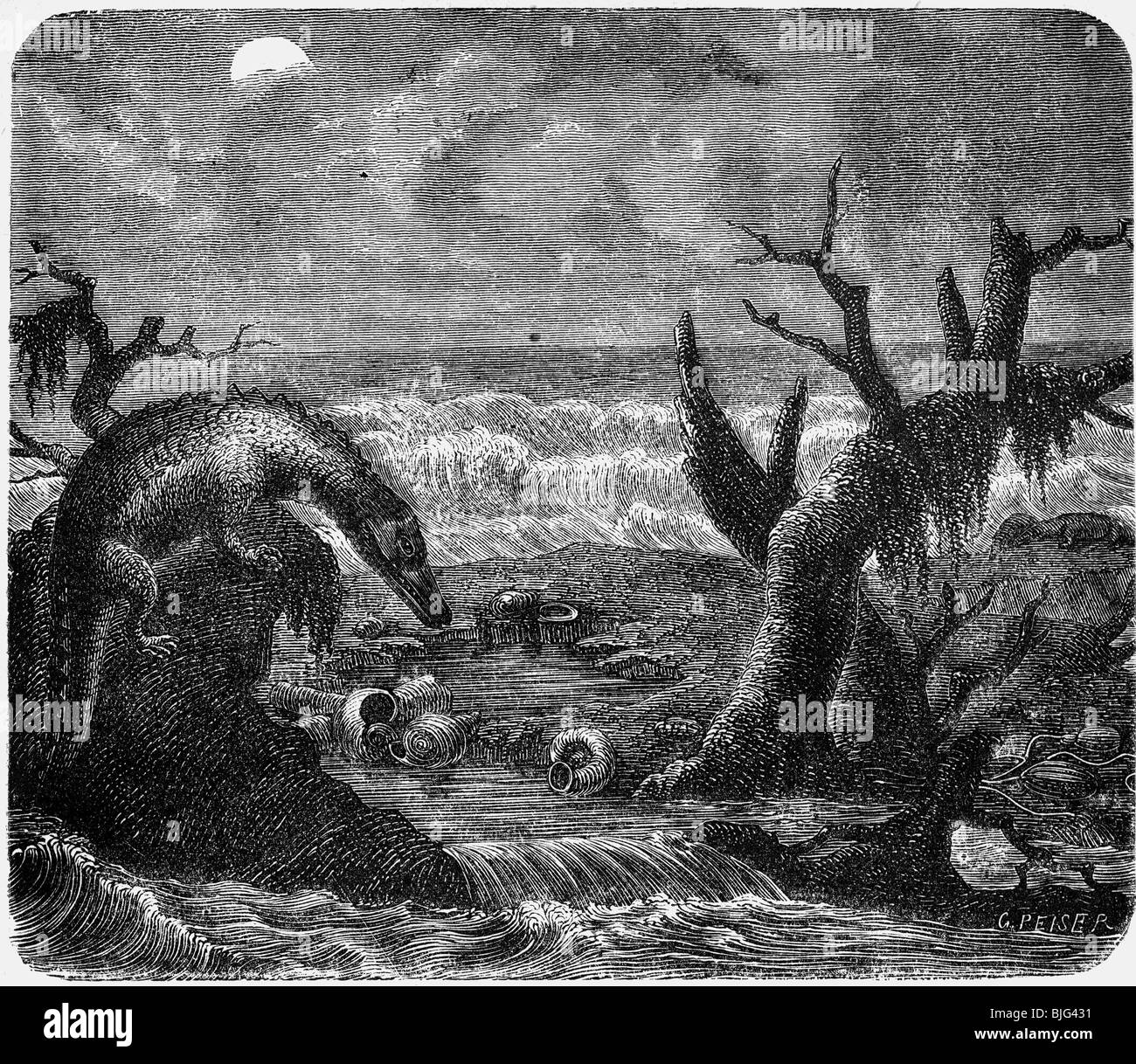 prehistory, animals, Nothosaur in a Triassic beach landscape, illustration, wood engraving, circa 1870, Additional - Stock Image
