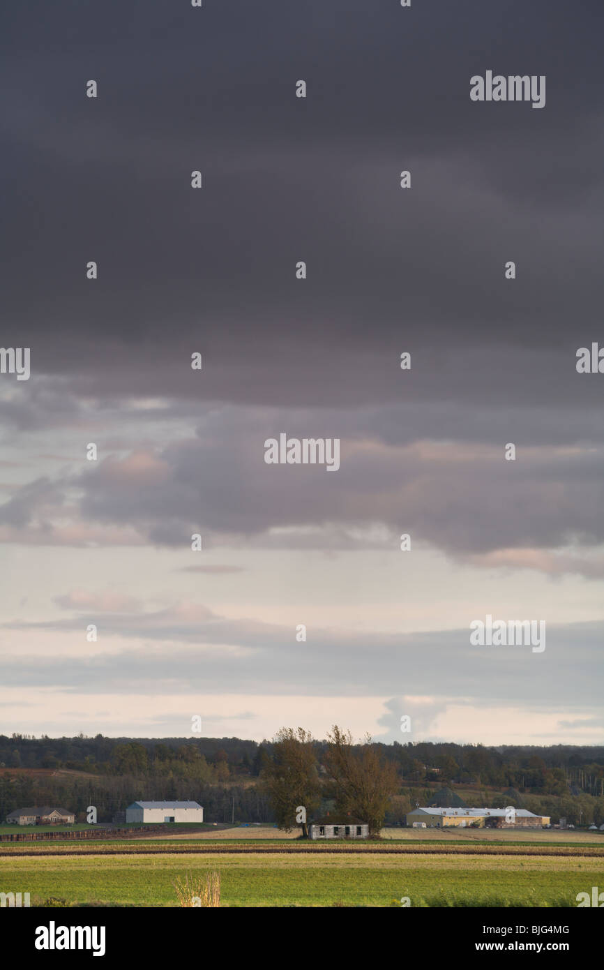 Stormy clouds over the Holland Marsh Stock Photo