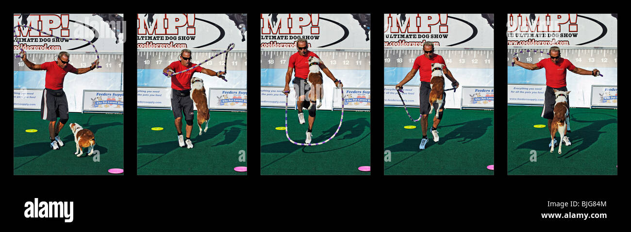 Sequence of Trained Dog Jumping Rope with Trainer at the 2009 Kentucky State Fair in Louisville, kentucky - Stock Image