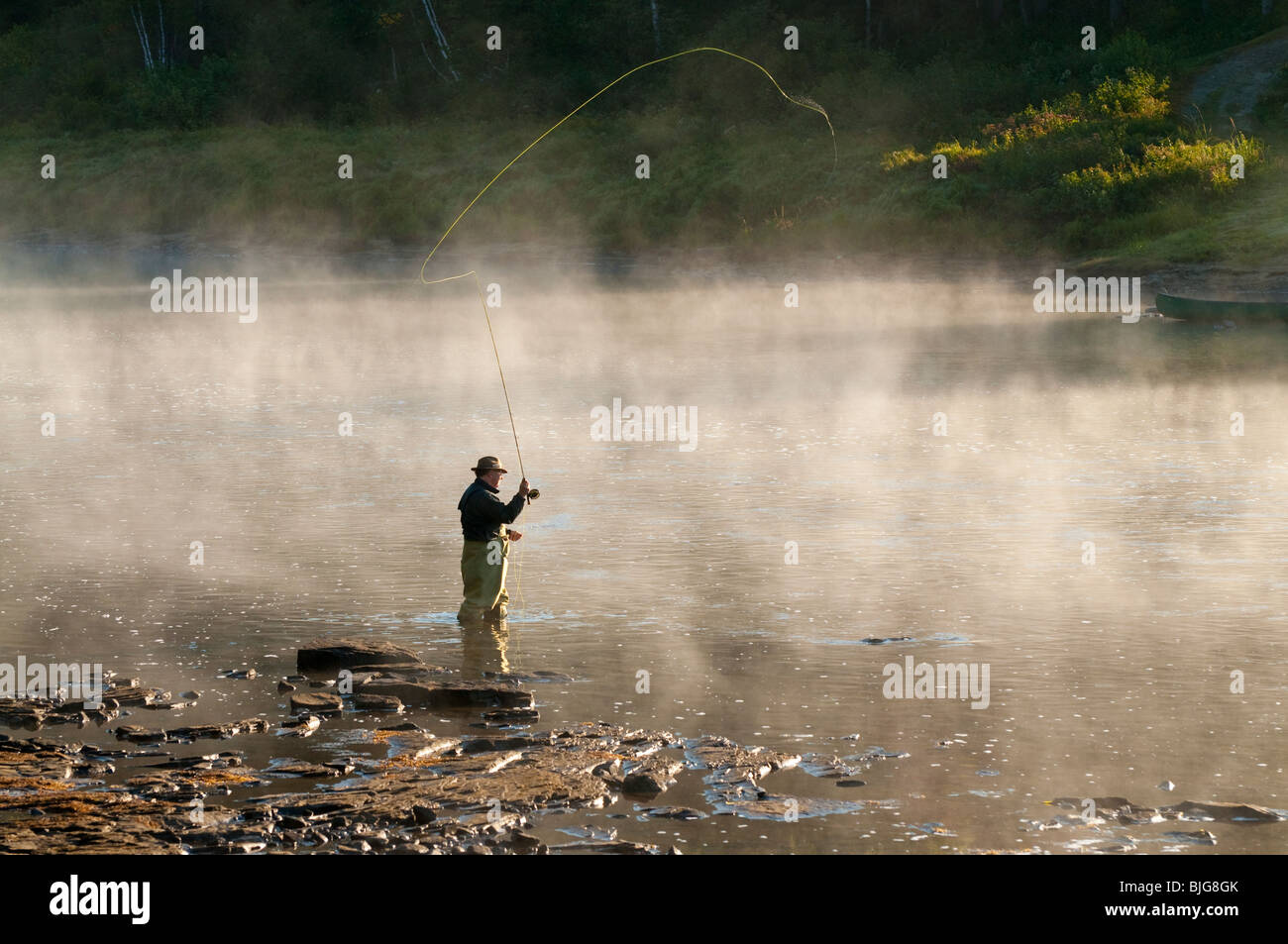NEW BRUNSWICK, Fly Fisherman casting for Atlantic Salmon in early morning mist on the Miramichi river - Stock Image