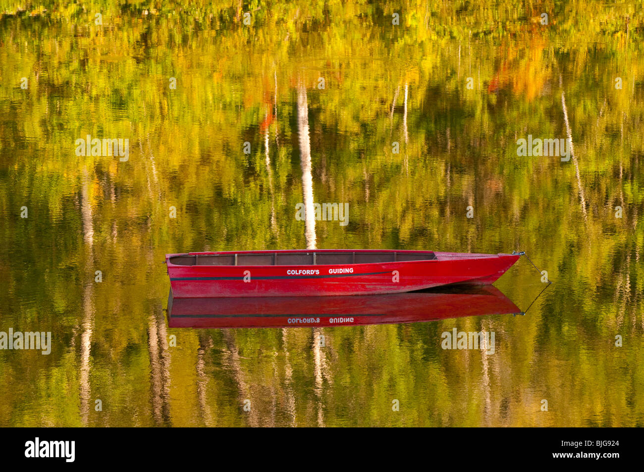 NEW BRUNSWICK, GUIDED FLY FISHING BOATS AND CANOES ANCHORED ON THE MIRAMICHI RIVER. Atlantic Salmon. - Stock Image