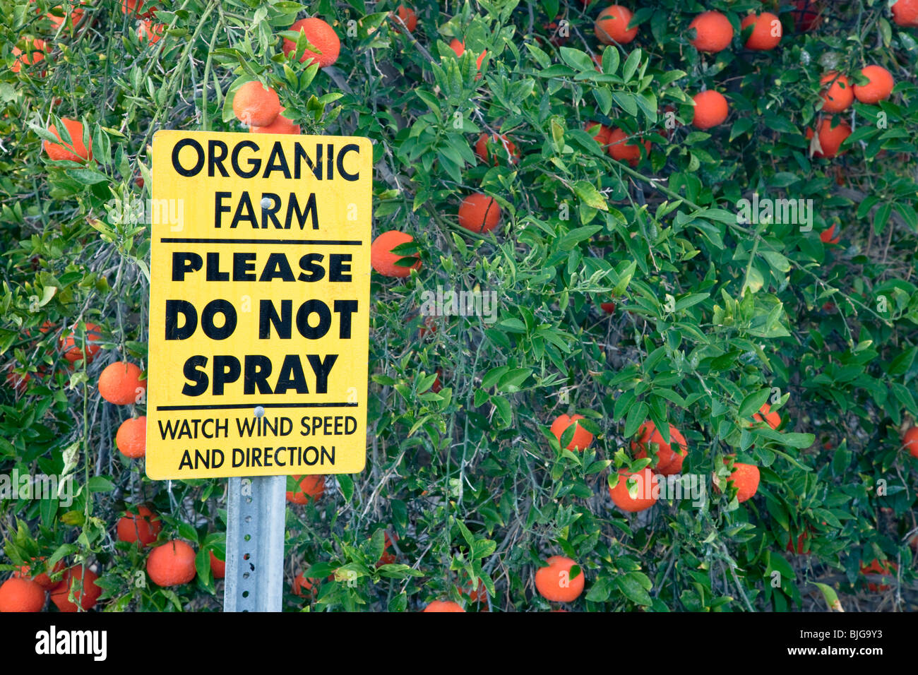 Sign 'Organic Farm - Please Do Not Spray'. - Stock Image
