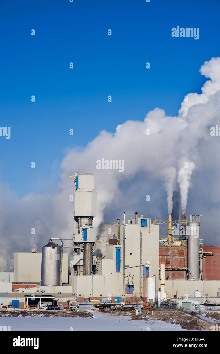 A working pulp mill - Stock Image