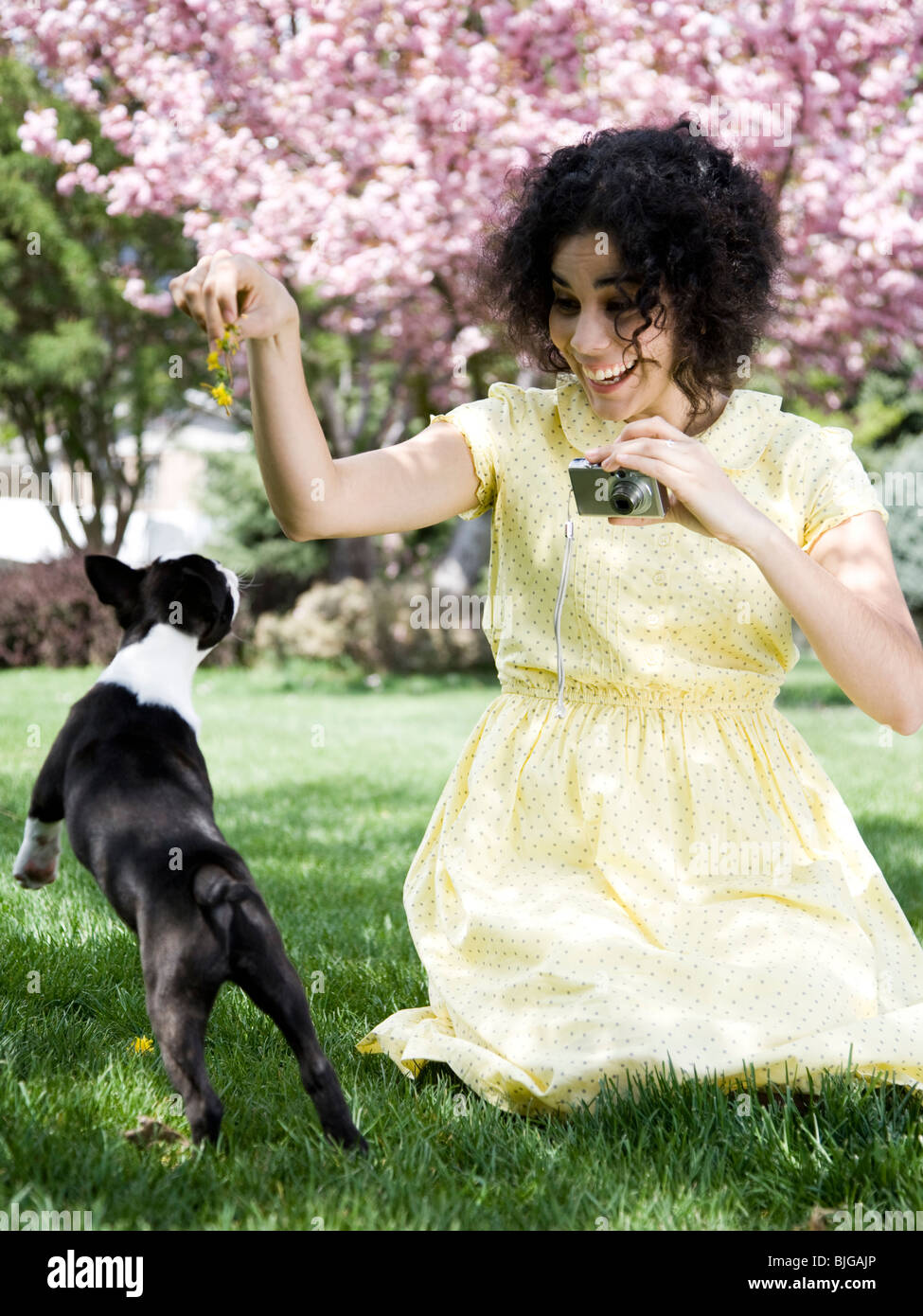 woman in a yellow dress taking photos - Stock Image