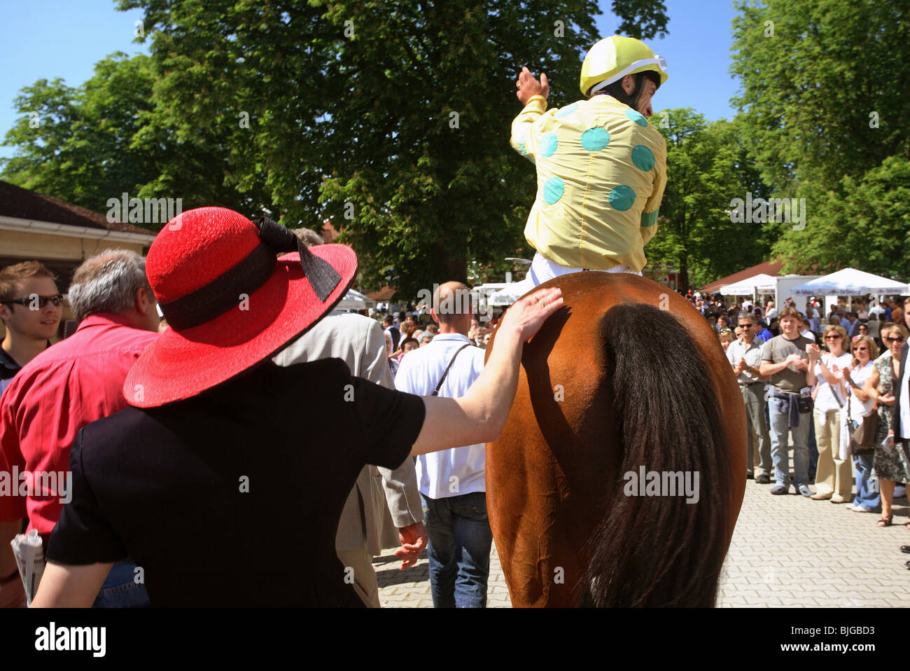 A jockey on a horse greeting the spectators at horse races, Iffezheim, Baden-Wurttemberg Stock Photo