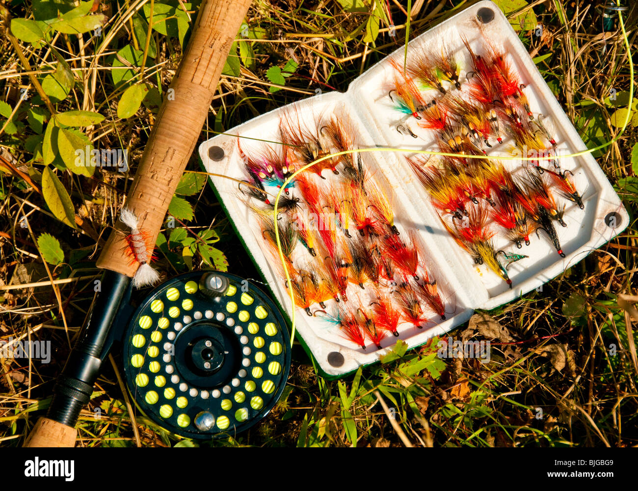 NEW BRUNSWICK, Fishing Rod & Reel and colorful box of Atlantic Salmon flys on the Famous Miramichi River - Stock Image