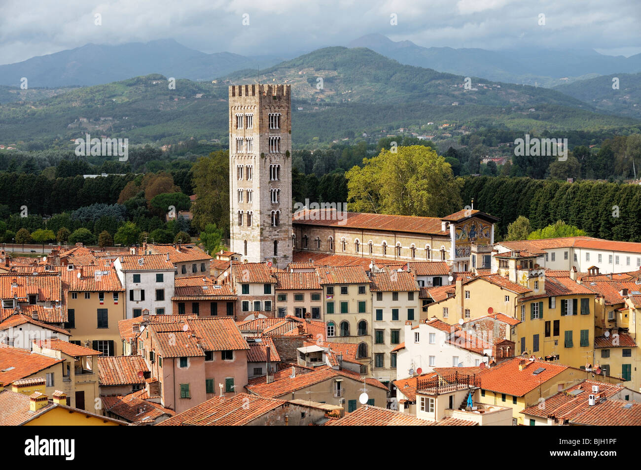 The tower of the Basilica di San Frediano rises above the mediaeval city of Lucca, Tuscany, Italy - Stock Image