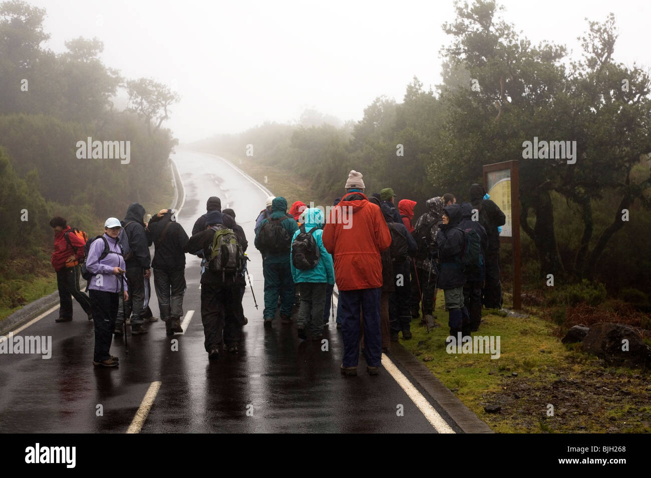 Walkers take part in the Madeira Islands Walking Festival of 2010. - Stock Image