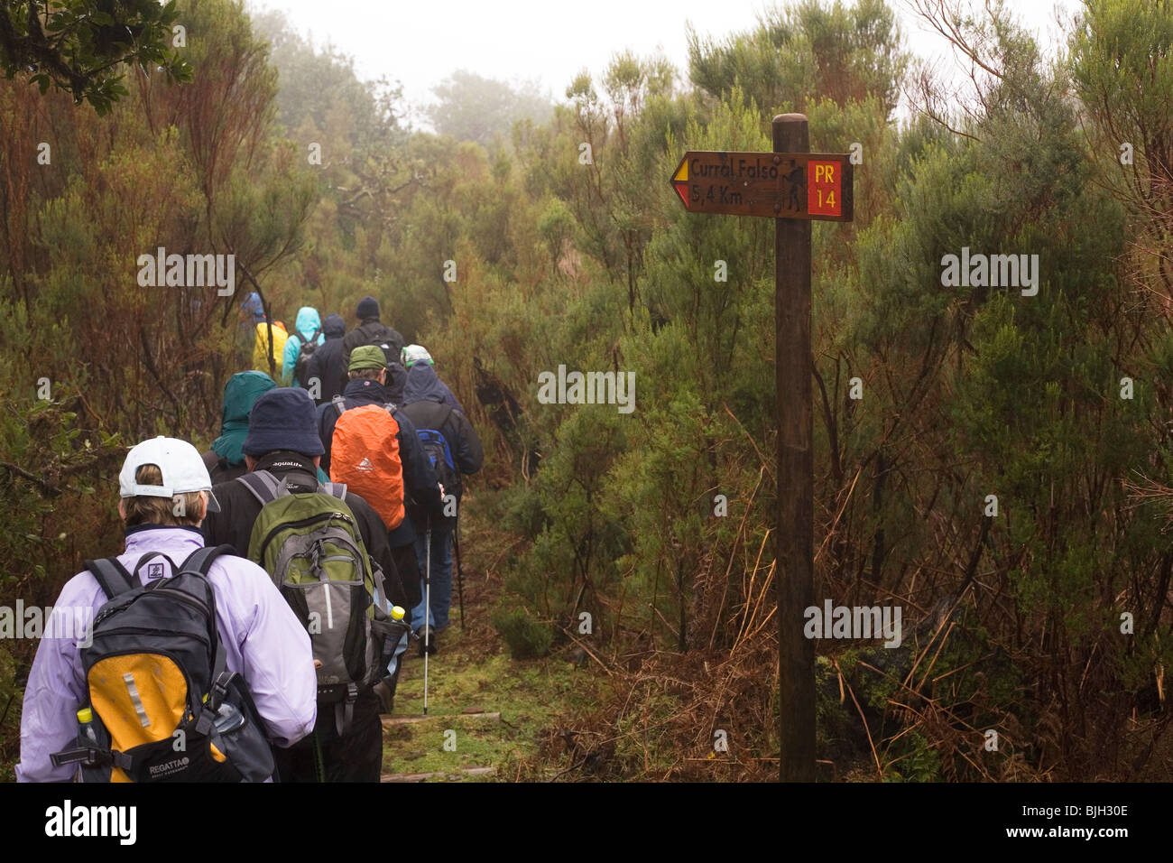 A group of walkers takes part in the Madeira Islands Walking Festival of 2010. - Stock Image