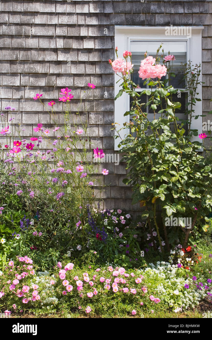 Garden - Stock Image