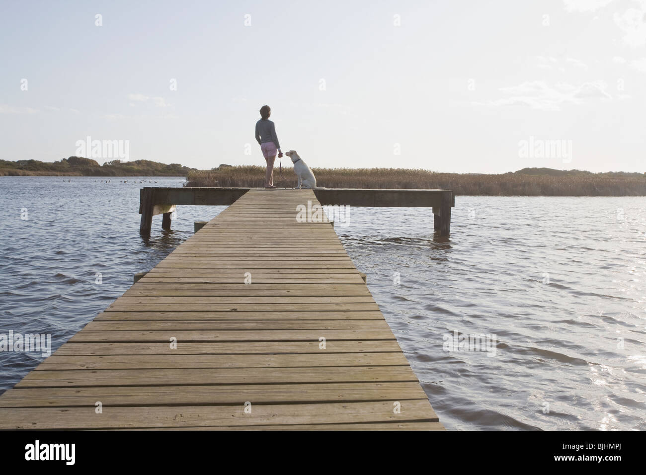 Woman and dog on pier - Stock Image