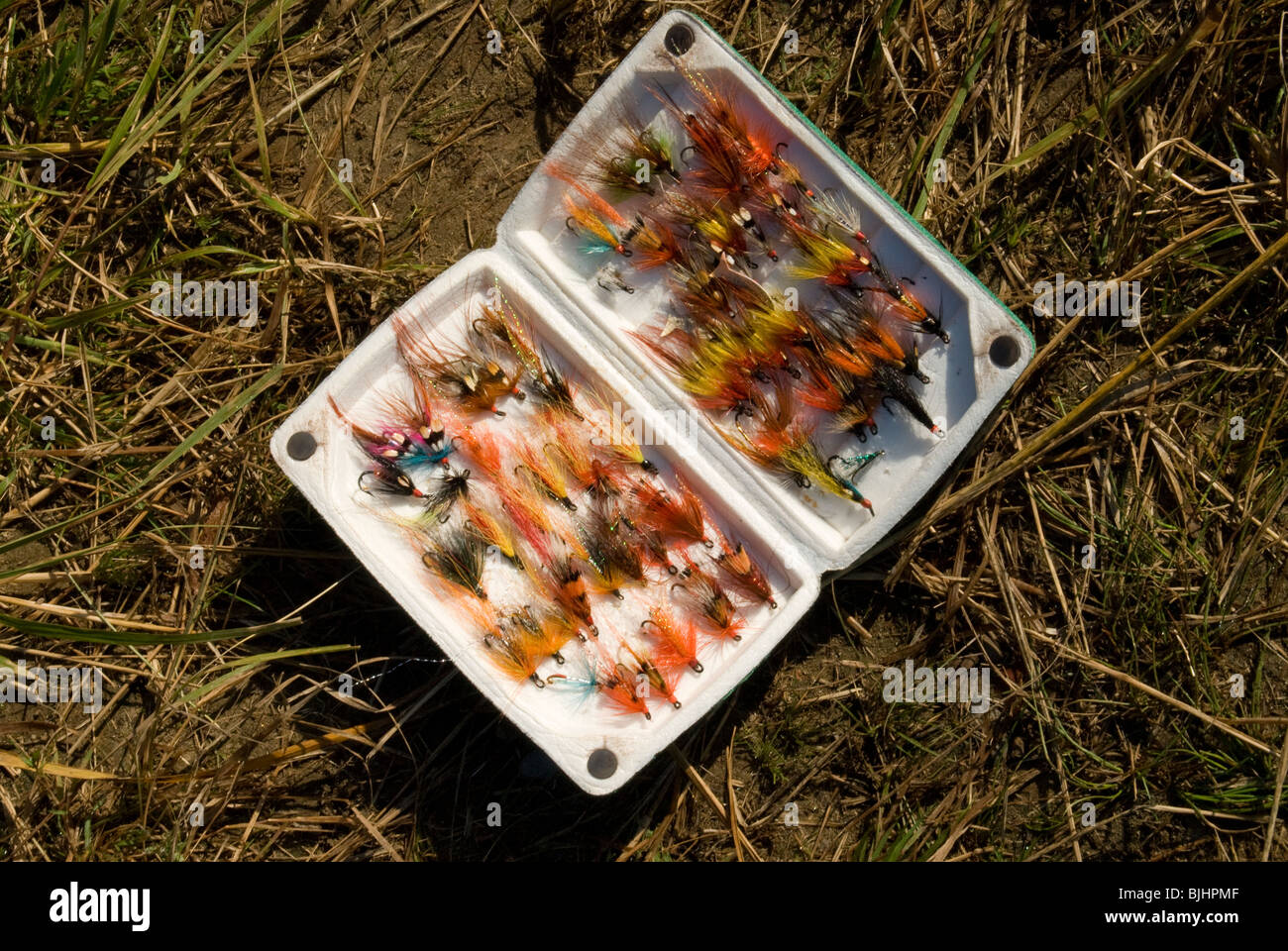 A box of Atlantic salmon flies tied by guide Rodney Colford. - Stock Image