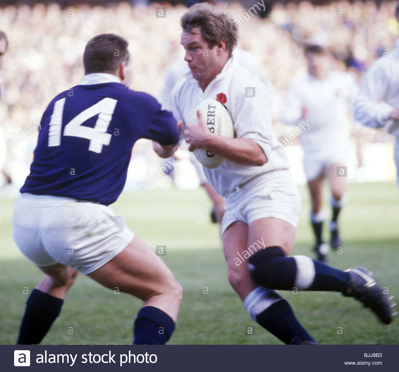 05/03/88 FIVE NATIONS SCOTLAND V ENGLAND (6-9) MURRAYFIELD - EDINBURGH England prop Jeff Probyn (right) charges - Stock Image