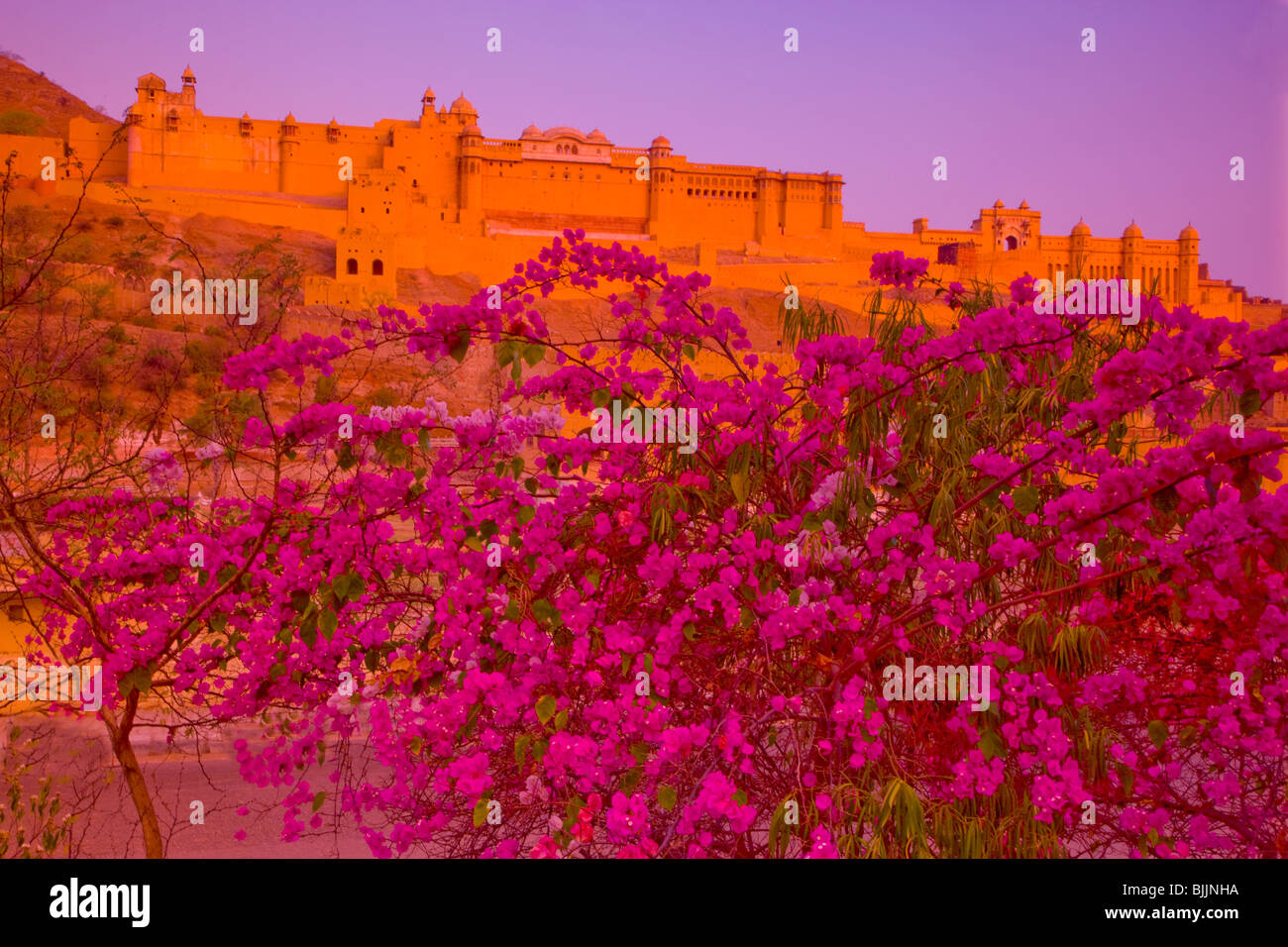 Amber Fort, Rajasthan, India, established in 1592, Near Jaipur - Stock Image