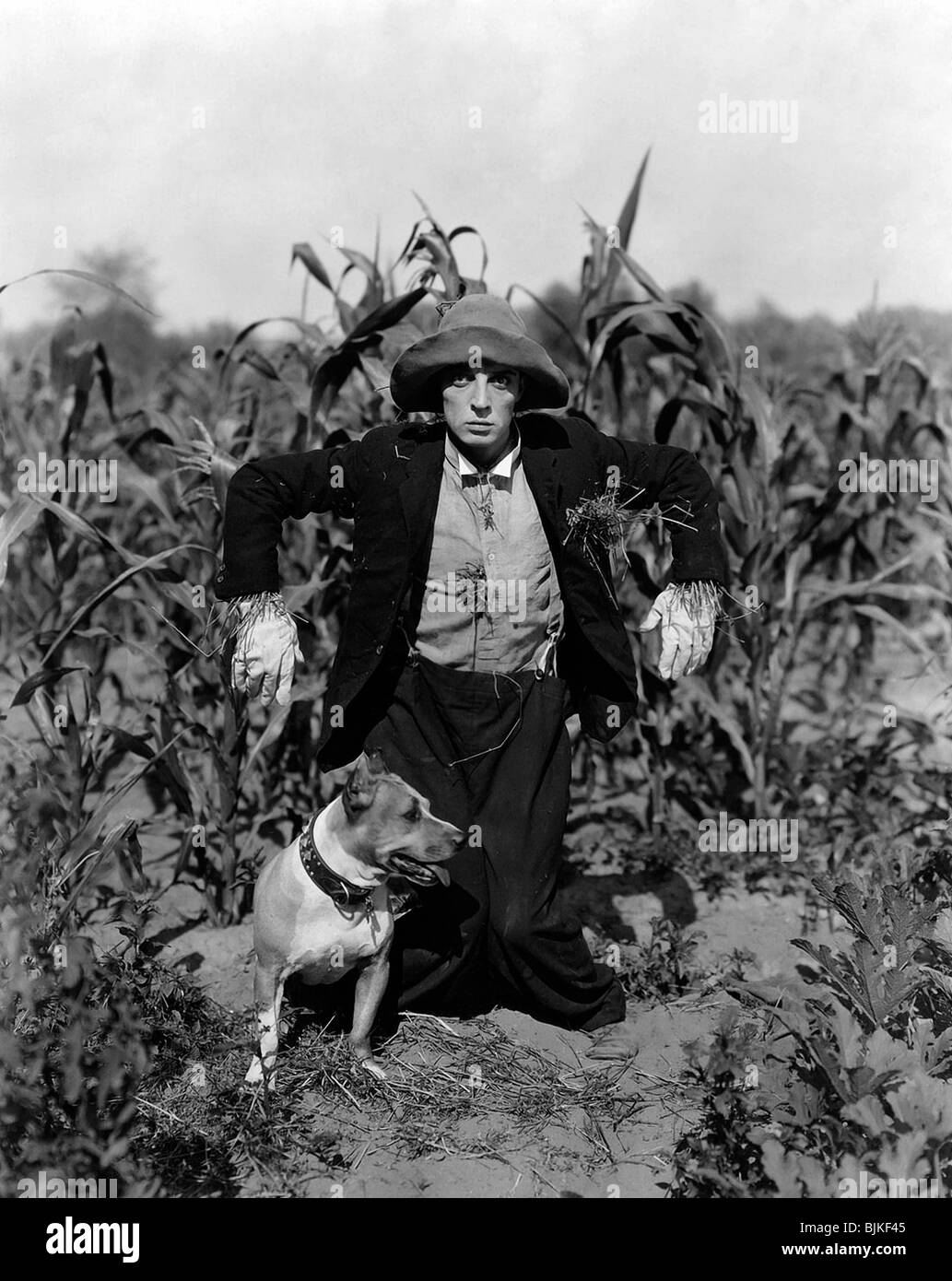 THE SCARECROW (1920) BUSTER KEATON EDWARD F CLINE (DIR) 001 - Stock Image