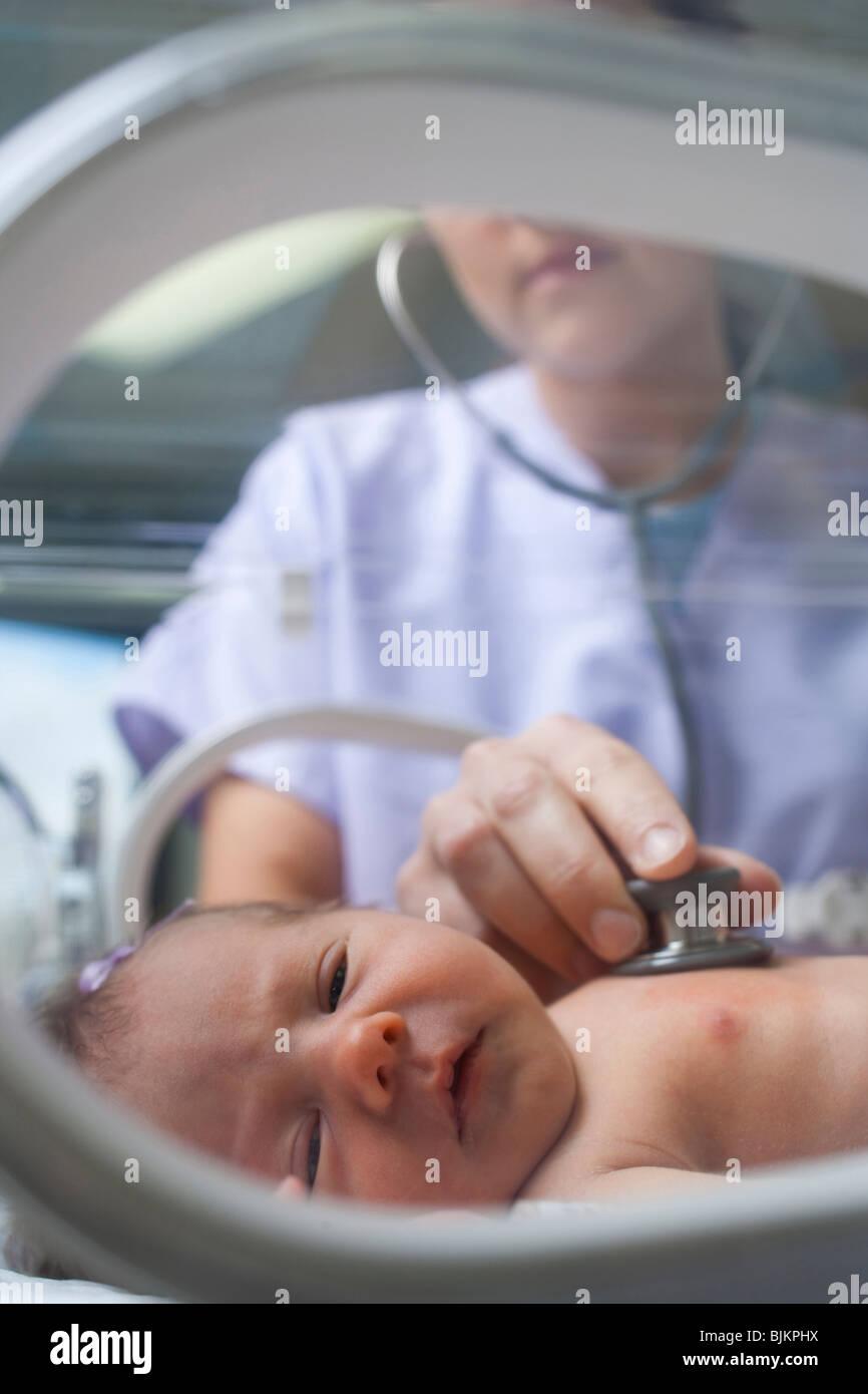 Nurse examining newborn in incubator - Stock Image