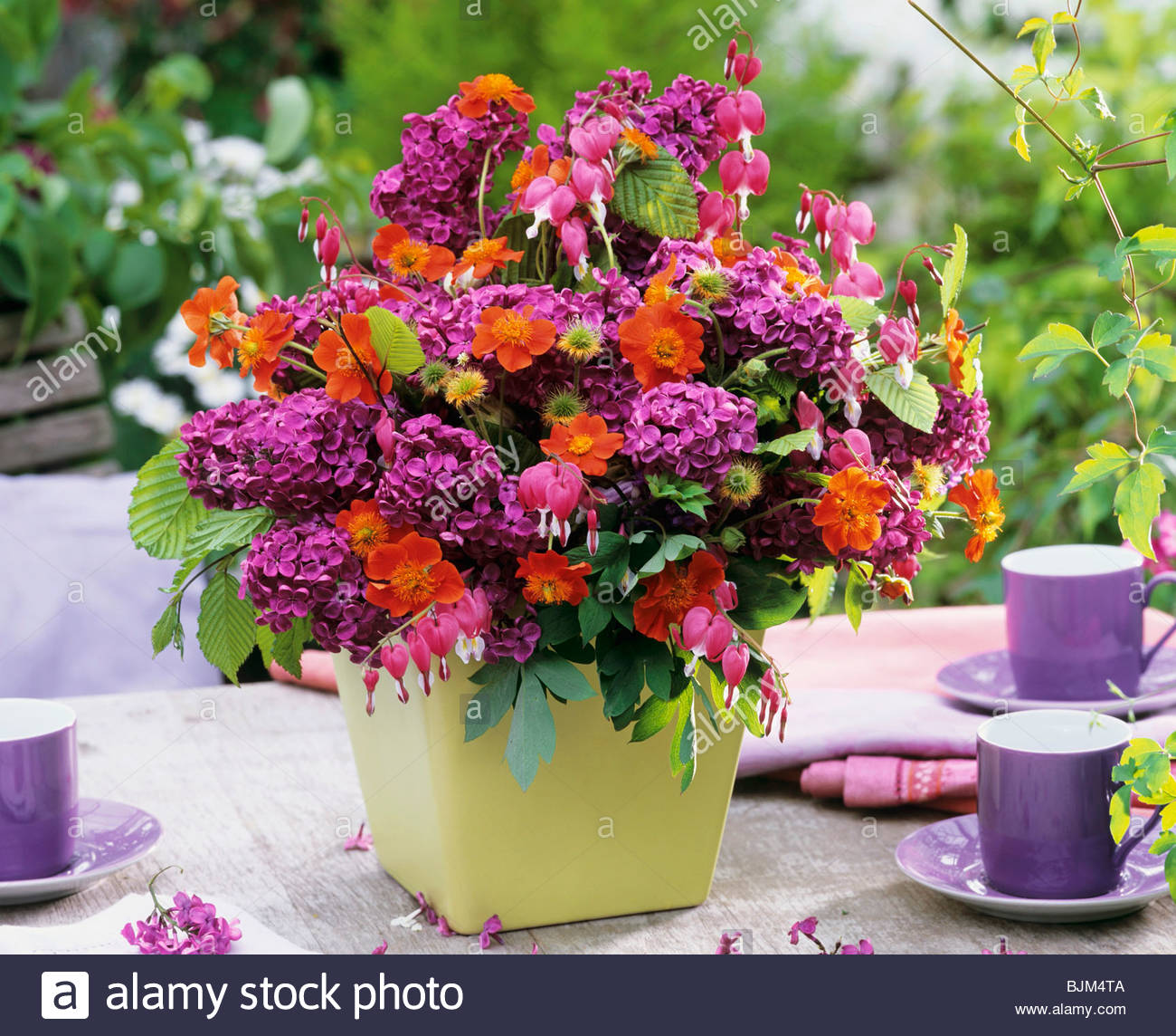 Arrangement of lilac, geum and bleeding heart Stock Photo: 28717034 ...
