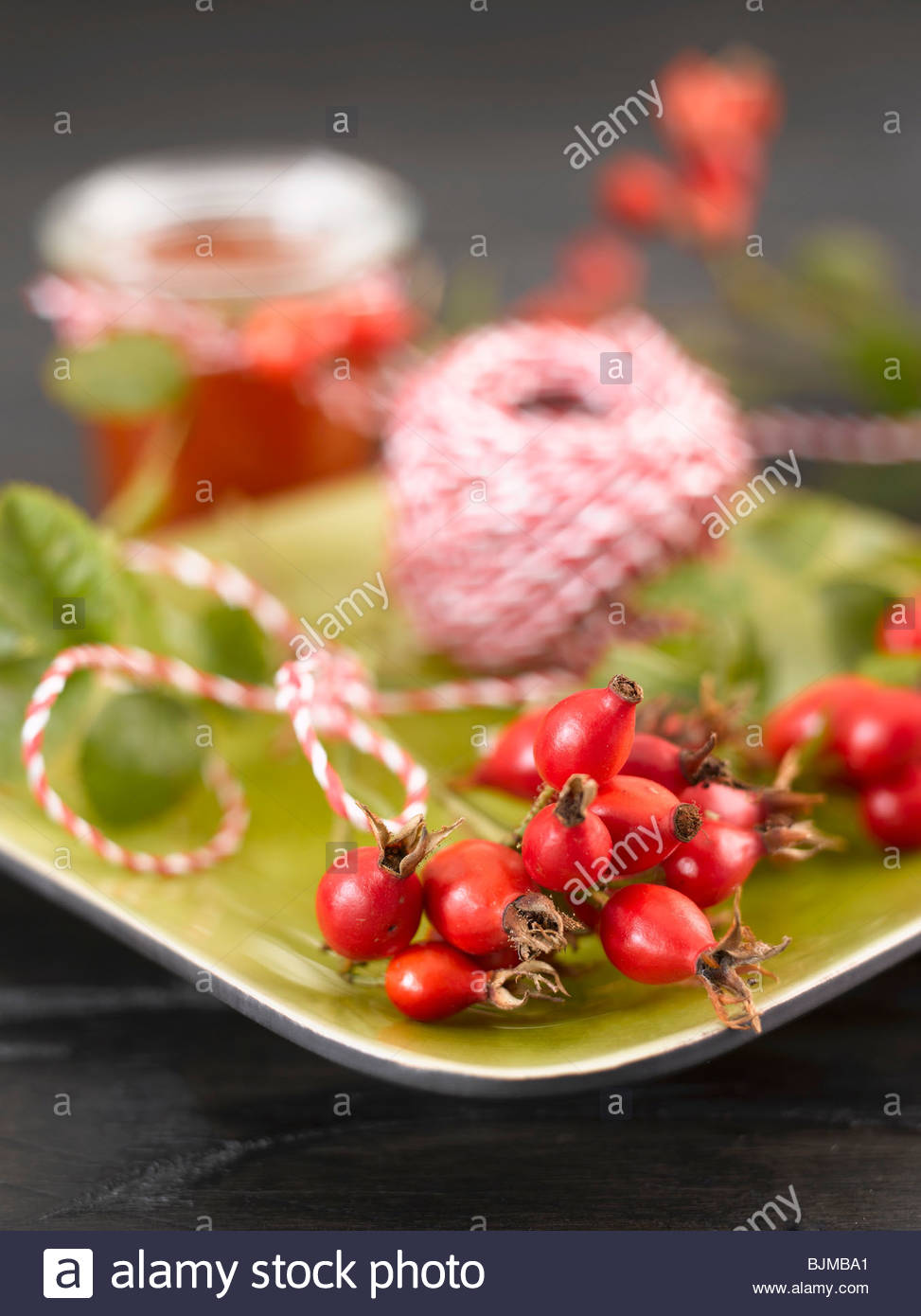 Rose hips on green plate with twine - Stock Image