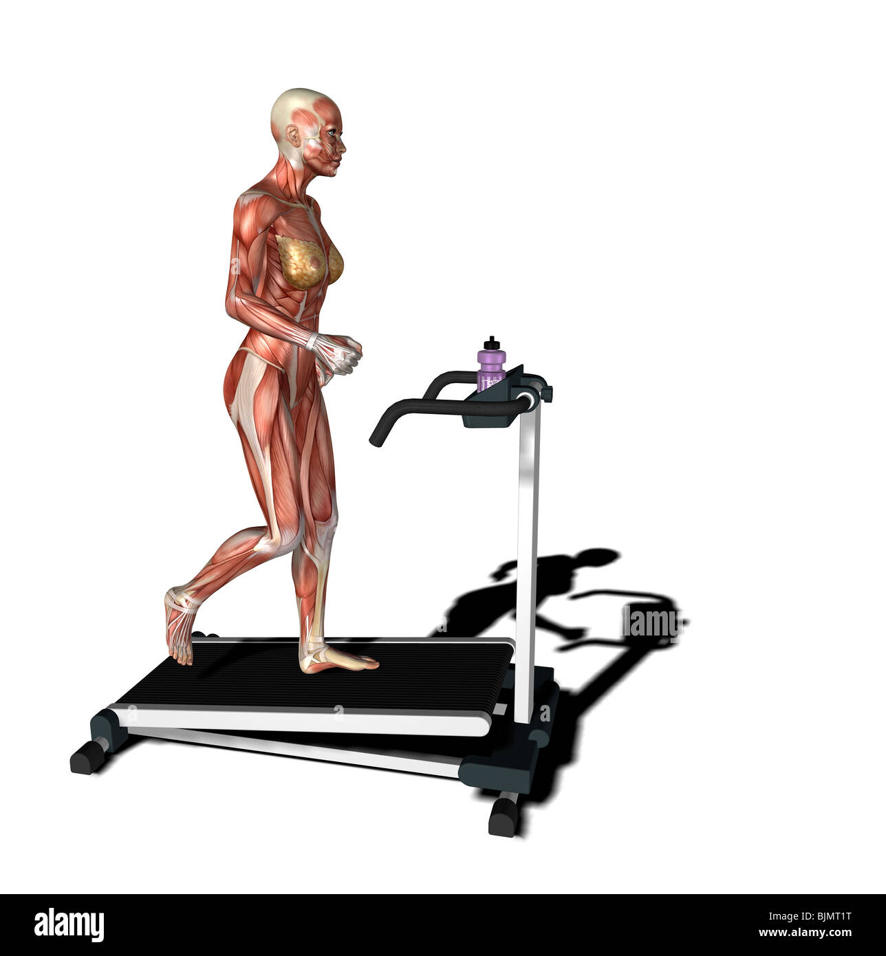 muscle woman as runner - Stock Image