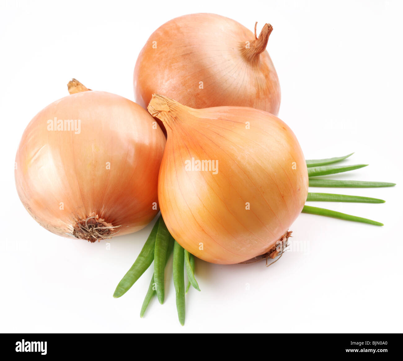 Fresh bulbs of onion on a white background - Stock Image