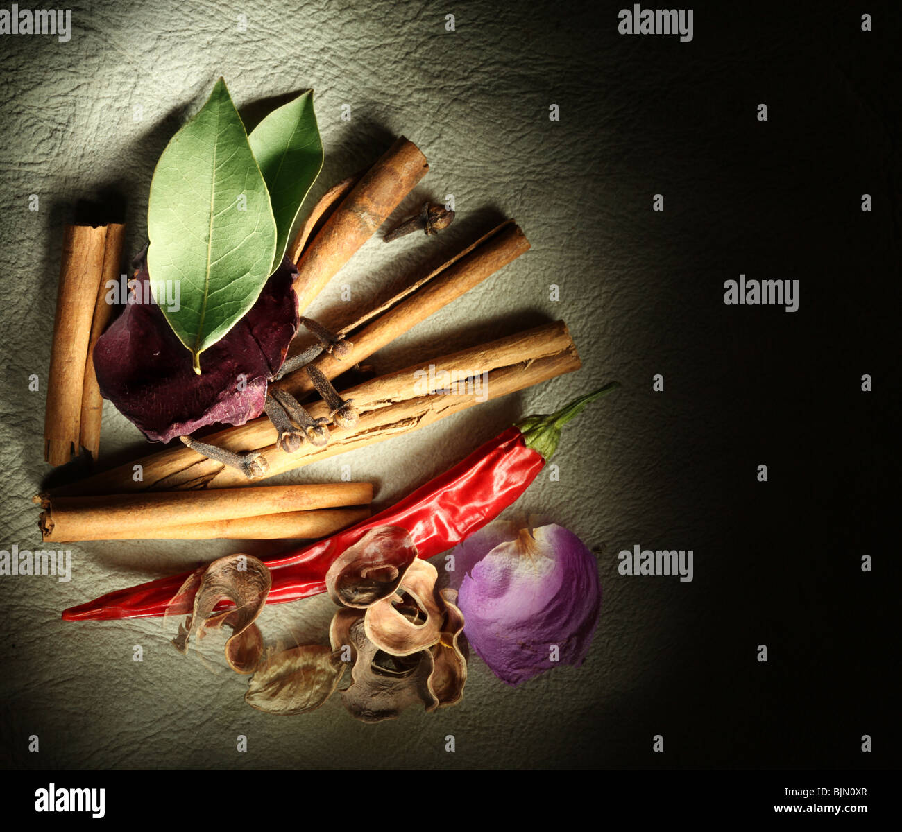 Texture background skins with dried spices - Stock Image