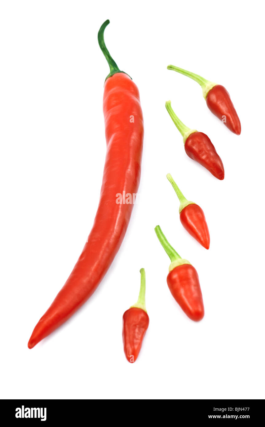 red hot chili peppers isolated - Stock Image