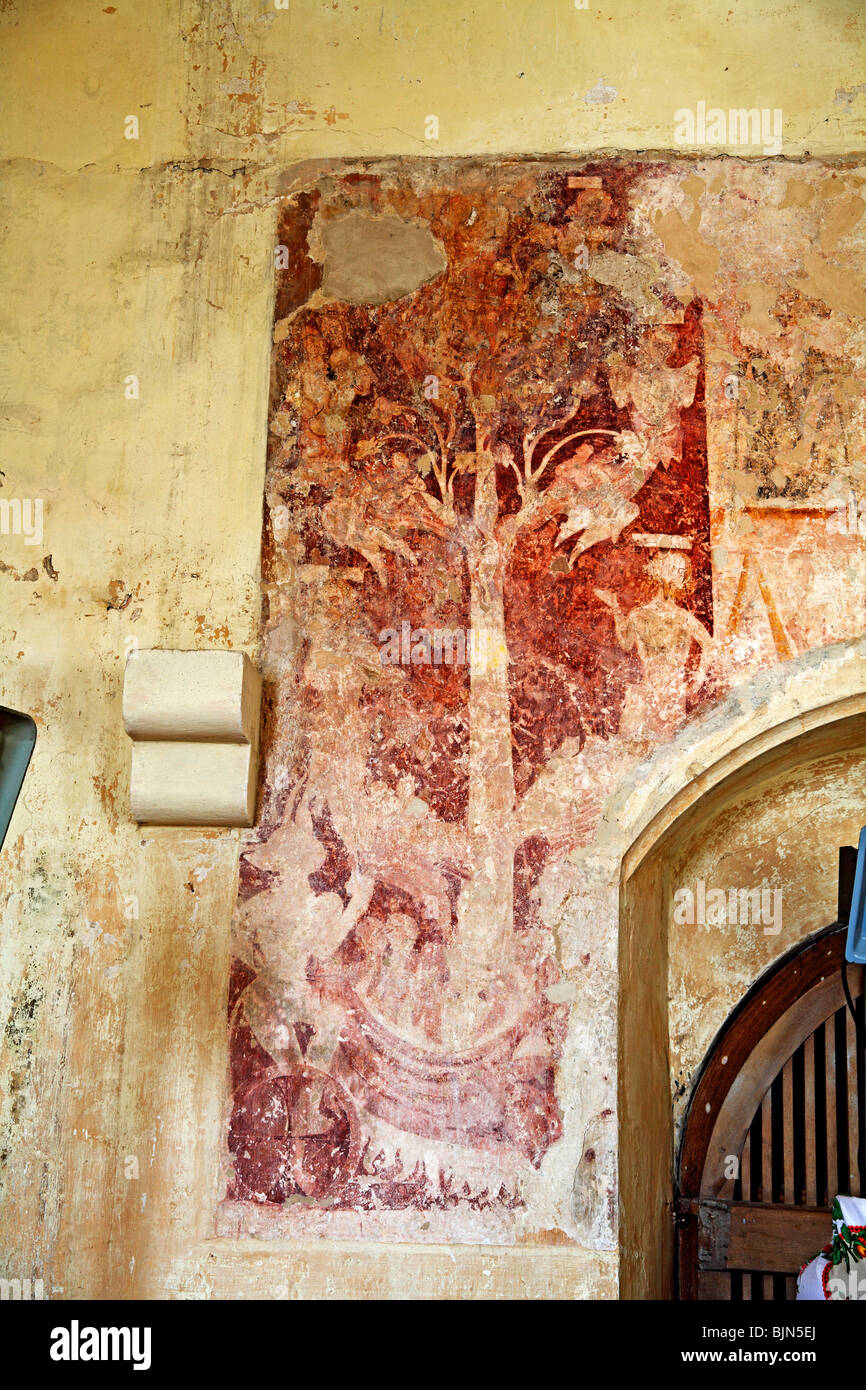 Medieval Wall Paintings depicting the Tree of the Seven Deadly Sins, All Saints Church, Crostwight, Norfolk - Stock Image