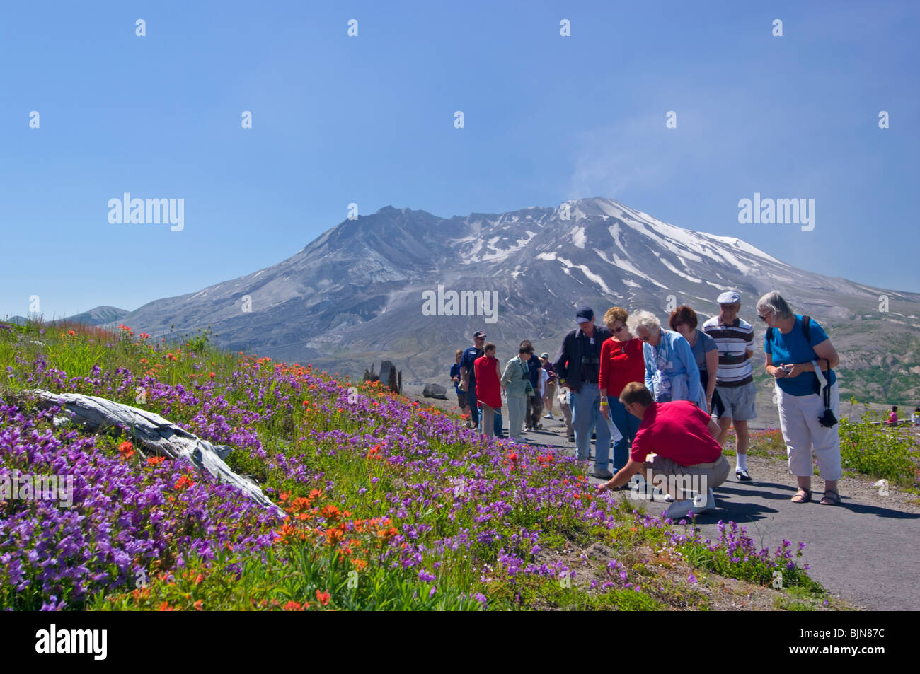 Guide shows a group of tourist around the visitors center in Mount Saint Helens Washington State - Stock Image