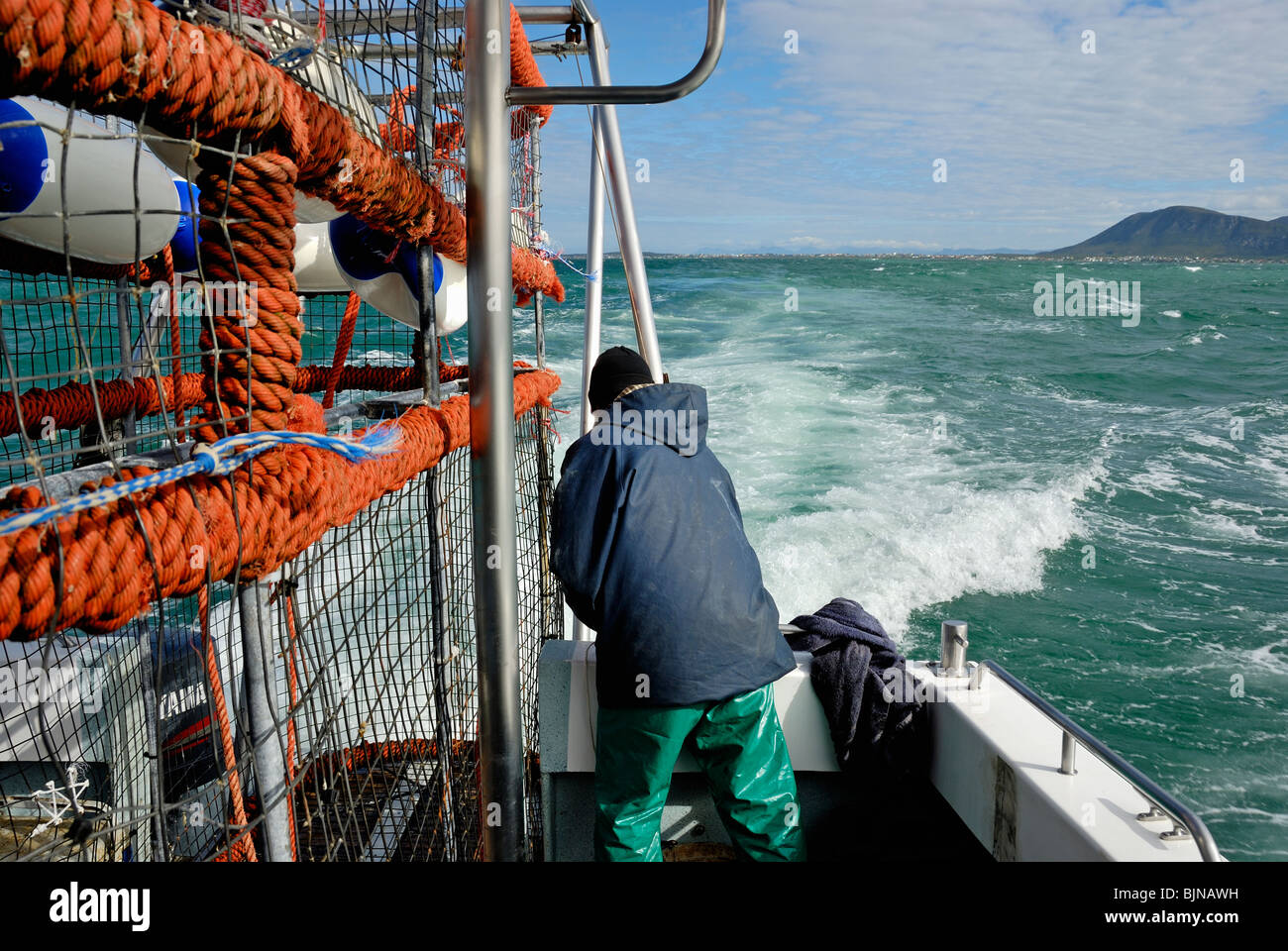 Mariner on a boat geared for the Great White Shark watching, by the special diving cage, Gansbaii, Dyer Island, - Stock Image