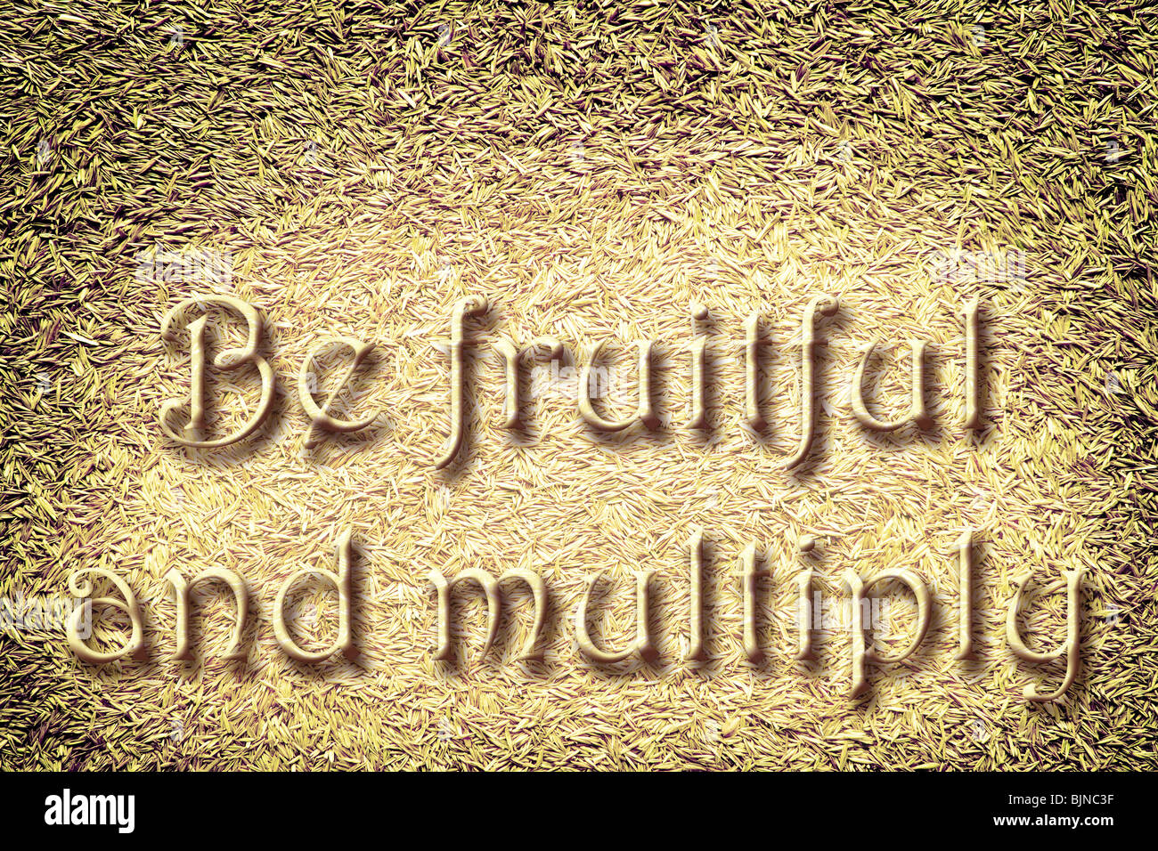 Many seeds under the commandment 'Be fruitful and multiply...' - Stock Image