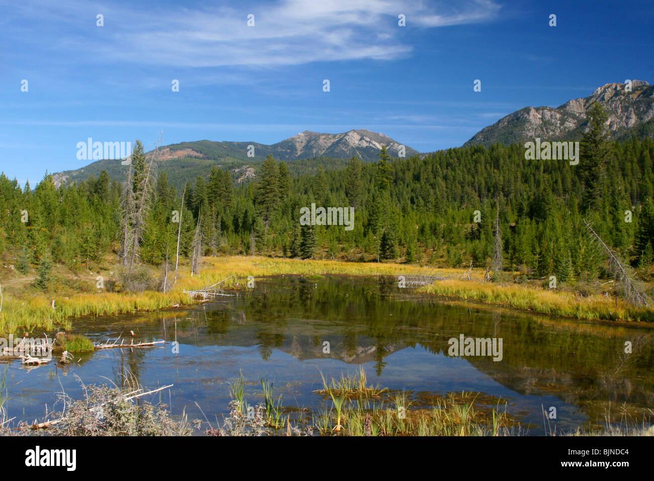 LANDSCAPE ;  Banff National Park, Alberta, Canada - Stock Image