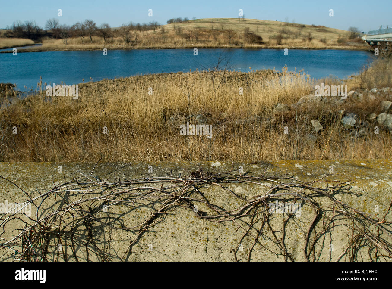 Little South Mound is seen across Richmond Creek in the Fresh Kills landfill in Staten Island in New York - Stock Image