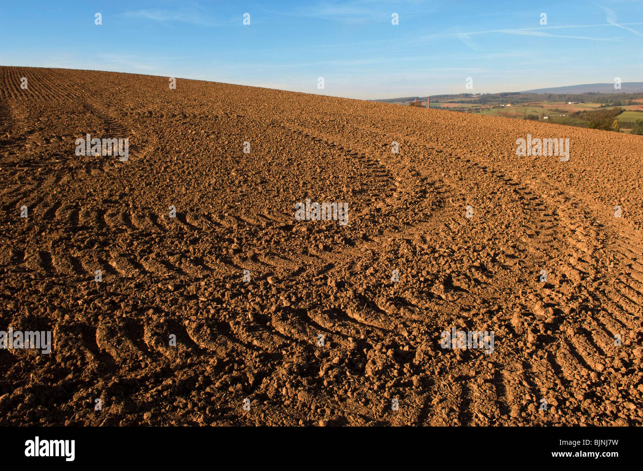Tractor tracks on a field Stock Photo