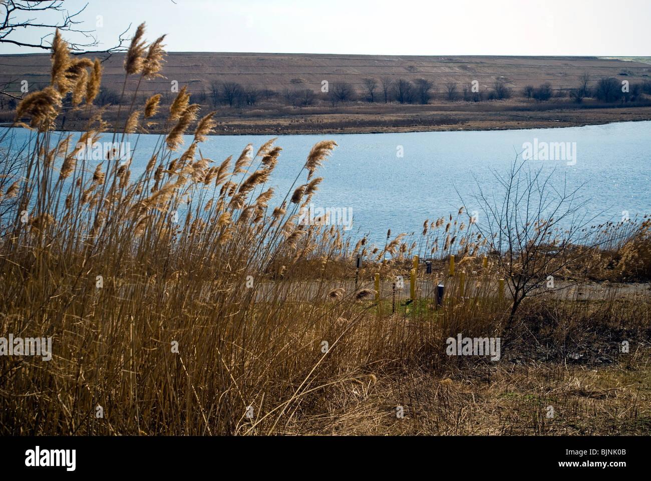 East Mound is seen across Fresh Kills in the Fresh Kills landfill in Staten Island in New York - Stock Image