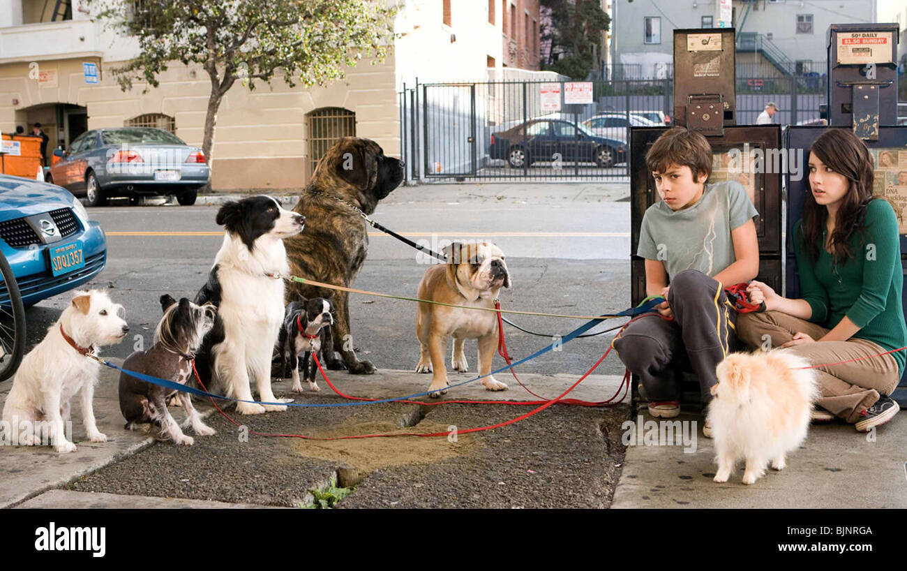 HOTEL FOR DOGS (2009) THOR FREUDENTHAL (DIR) 002 - Stock Image