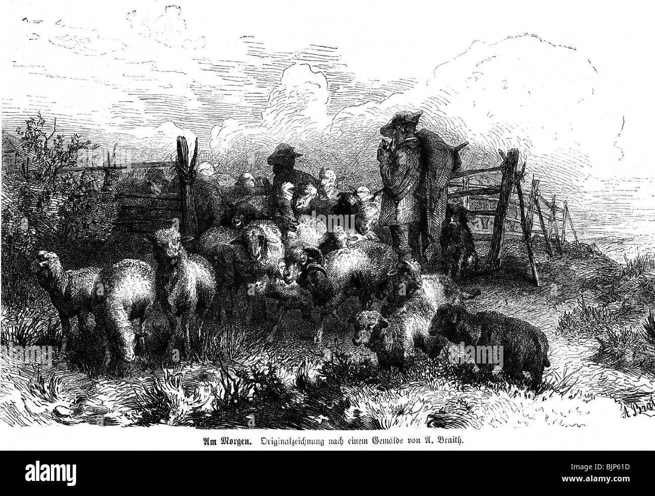 agriculture / farming, sheep farming, shepherd out at feed in the morning, wood engraving after painting by Anton - Stock Image
