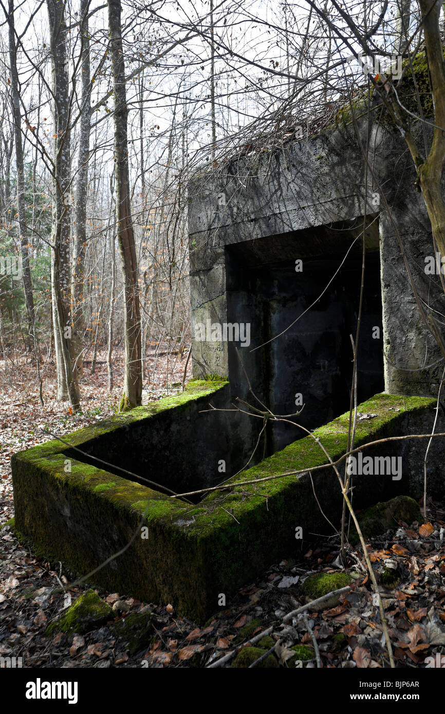 An abandoned World War II concrete bunker in the woods, Ins Switzerland. Charles Lupica - Stock Image