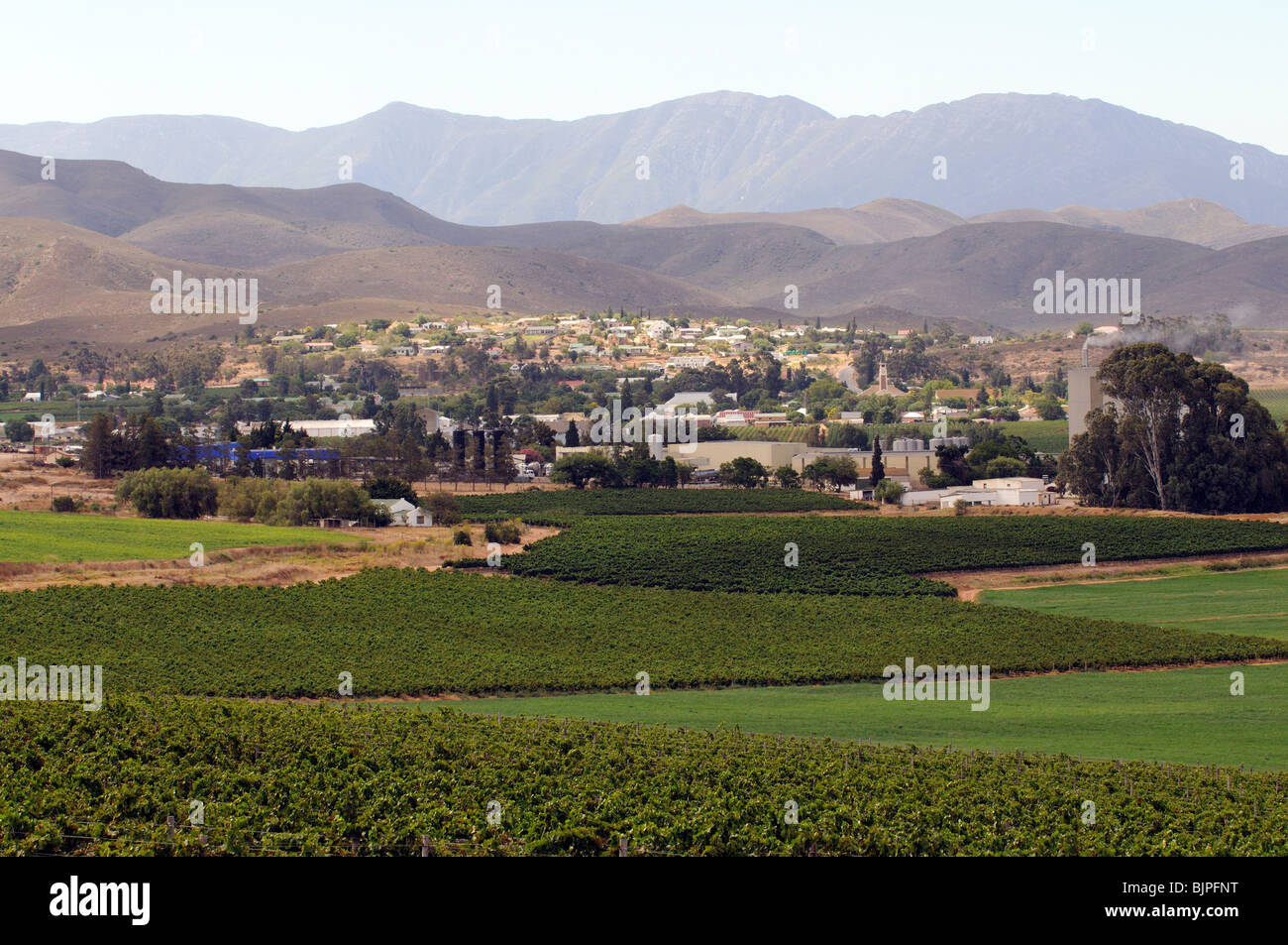 Bonnievale below the Riviersonderend Mountains a wine producing town surrounded by vines in the Breede River region - Stock Image